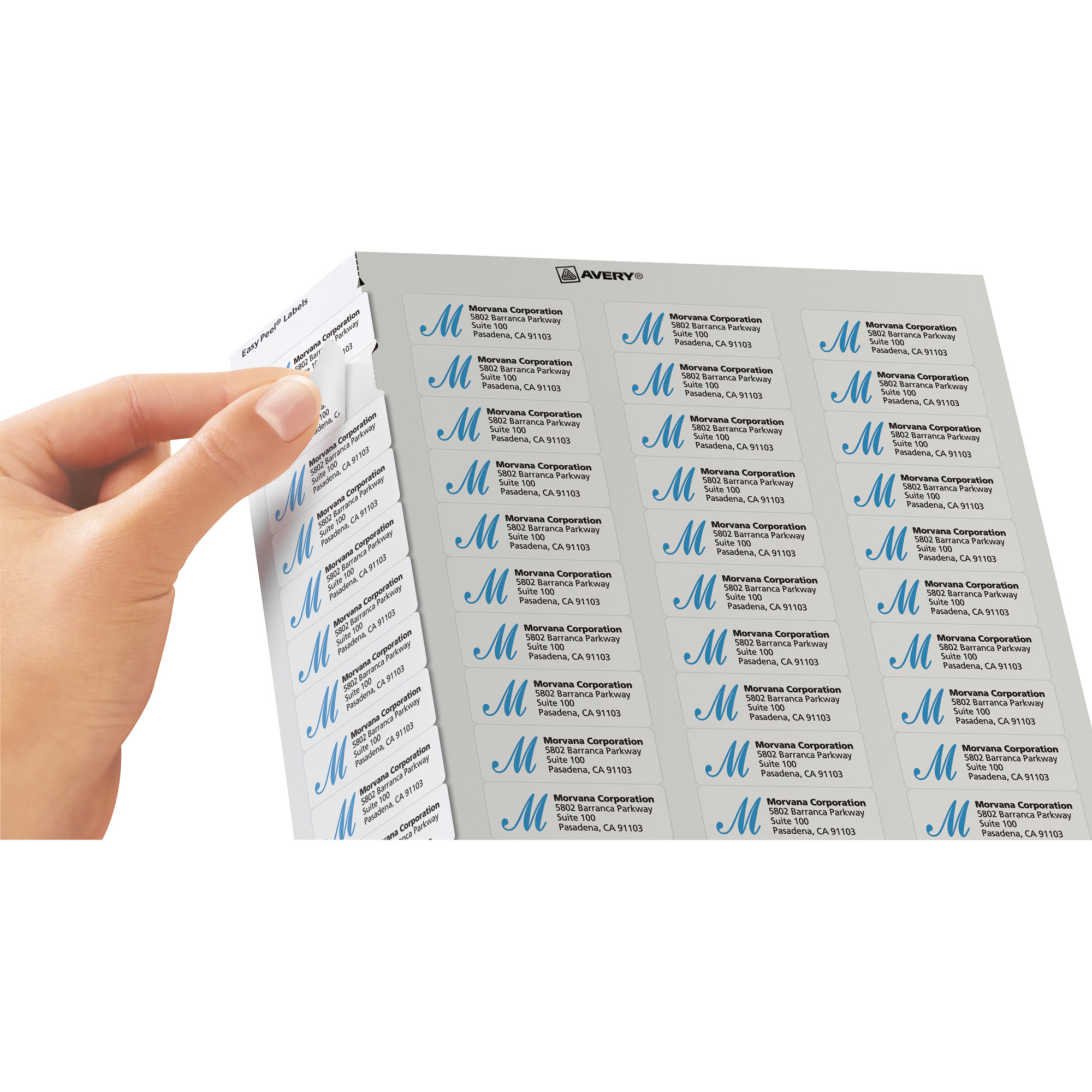 Ncr Labels Template from www.franklinprints.com